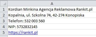 NAP firmy w Excelu